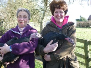 Rosemary (left) and Kathy give the turkeys a quick cuddle.